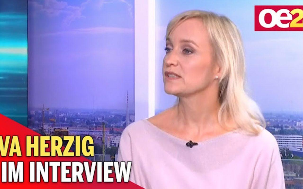 Fellner Interview